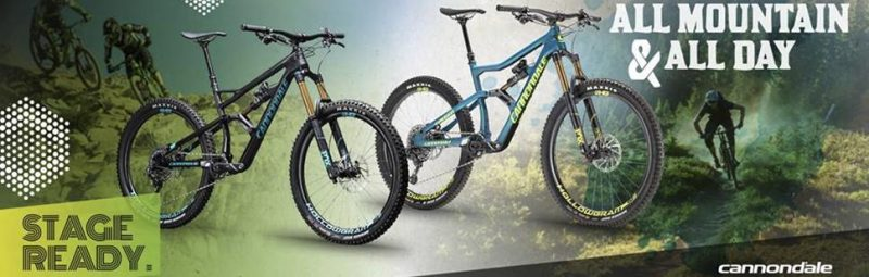 Mountain Bike FULL S. (muscolari)