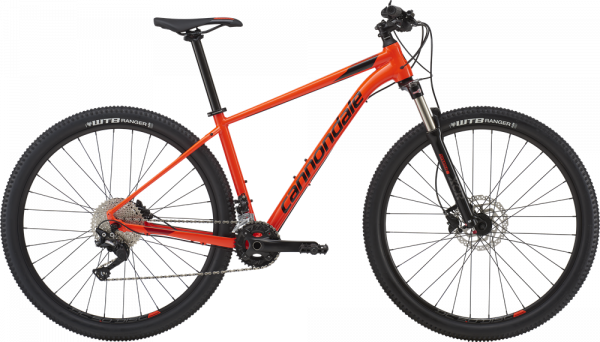 Cannondale – Trail 5 – 2019