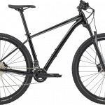 Trail 3 M 29 bbq 2020 cannondale