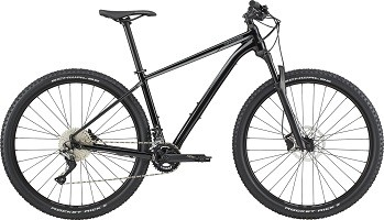 Trail 3 M 29 bbq 2020 cannondale mountain bike